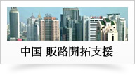 中国 販路開拓支援